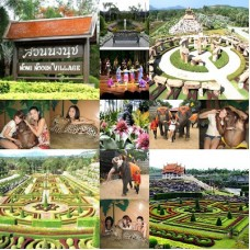 Nong Nooch Garden Ticket with Free Transfer