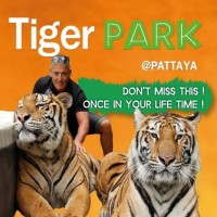 Tiger Park Pattaya Ticket with Free Transfer